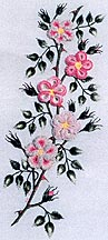 Wild Roses- Brazilian Embroidery pattern