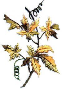 Virginia Creeper Brazilian Embroidery Patterm