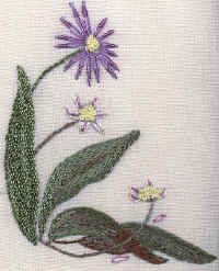 The Last Aster Brazilian Embroidery Pattern