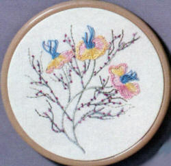 Brazilian Embroidery Learning Kit 11